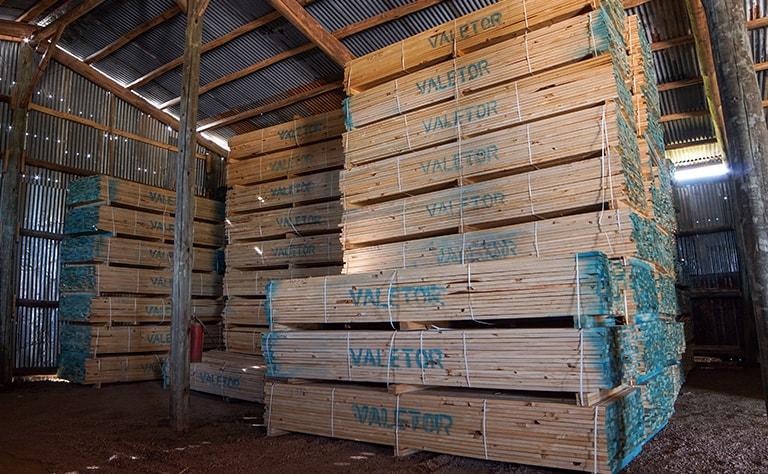 Aserradero mayorista de madera de pino